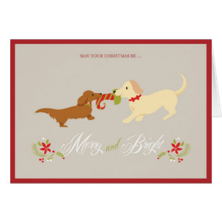 Joyeuse et lumineuse carte de Noël de Doxie