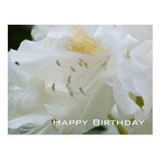 Joyeux anniversaire blanc du rhododendron | cartes postales