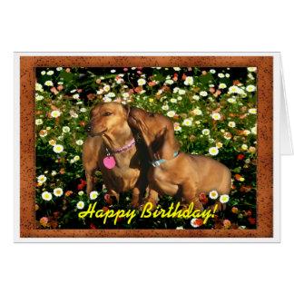 Joyeux anniversaire des teckels ! carte de vœux