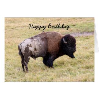 Joyeux anniversaire, humour poussiéreux de Taureau Carte De Vœux