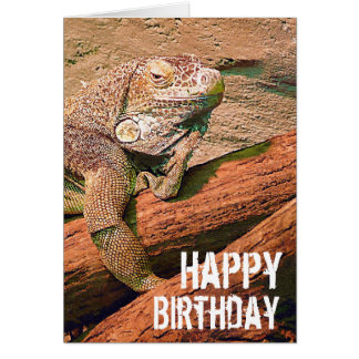 Joyeux anniversaire - lézard de salon paresseux carte de vœux