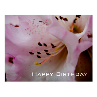 Joyeux anniversaire rose du rhododendron | carte postale