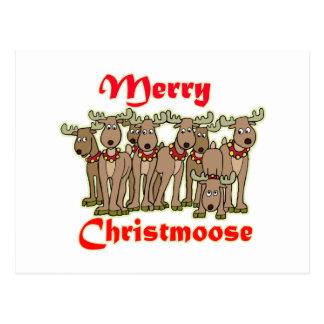 Joyeux Christmoose Cartes Postales