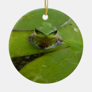 joyeux grenouille-MAS Ornement Rond En Céramique