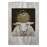 Judith la carte de moutons sur l'arrière - plan pi
