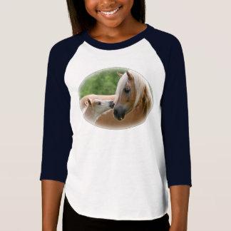 Jument et poulain de Haflinger caressant T-shirt