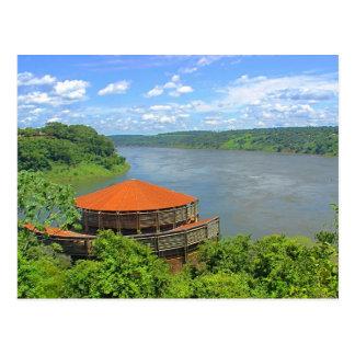 Jungle au Brésil Carte Postale