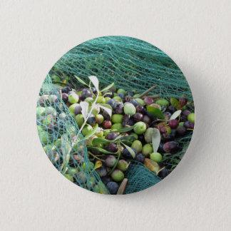 Juste olives sélectionnées sur le filet pendant le badge