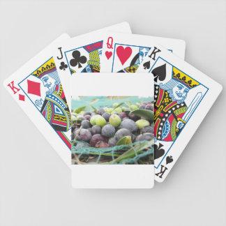 Juste olives sélectionnées sur le filet pendant le jeu de cartes