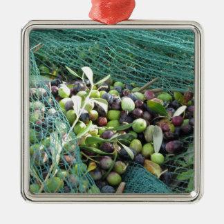 Juste olives sélectionnées sur le filet pendant le ornement carré argenté