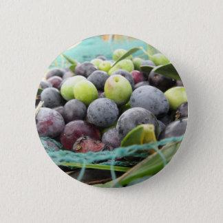 Juste olives sélectionnées sur le filet pendant le pin's