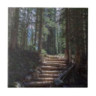 Juste un autre escalier au ciel petit carreau carré