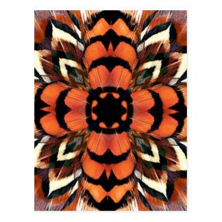 Kaléidoscope de plume de faisan carte postale