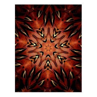 Kaléidoscope flamboyant de plume cartes postales