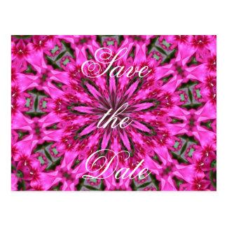 Kaléidoscope rose de Phlox Carte Postale