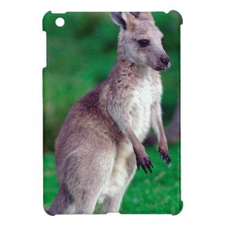 Kangourou mignon de bébé de joey coques iPad mini