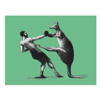 Kangourou vintage de boxe carte postale