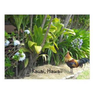 Kauai, Hawaï Carte Postale