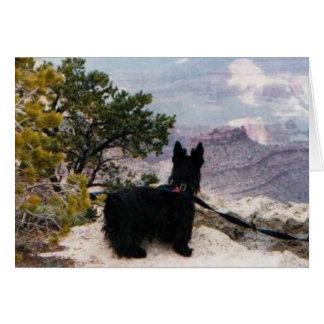 Kelly huent à la carte de voeux de canyon grand
