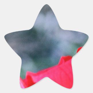 Ketmie 4 sticker étoile