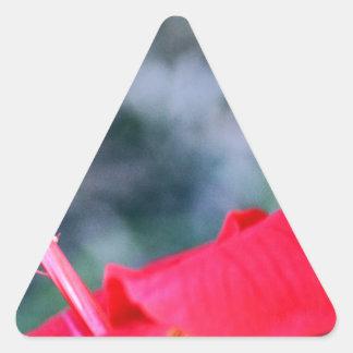 Ketmie 4 stickers en triangle