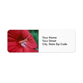 Ketmie rouge avec l'étiquette de adresse de retour étiquettes d'adresse retour