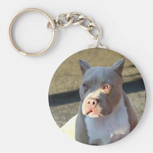 Keychain de chiot du Staffordshire Terrier américa Porte-clés