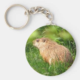 Keychain de ~ de marmotte d'Amérique Porte-clé