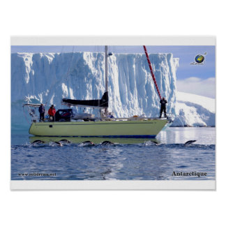 Kim en Antarctique Poster