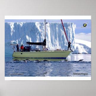 Kim en Antarctique Posters