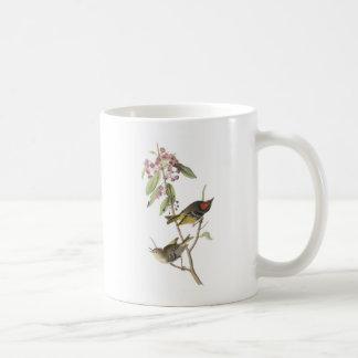 Kinglet Rubis-couronné par Audubon Mug