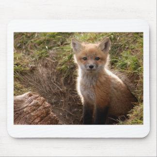kit de renard tapis de souris