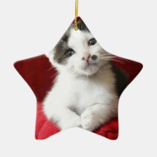 KittenNamed impressionnant Ornement Étoile En Céramique