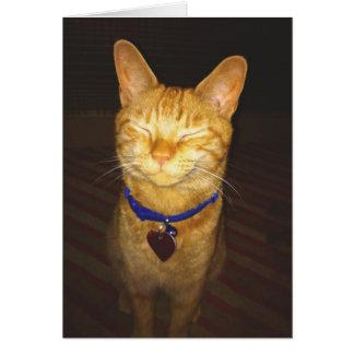 Kitty font un anniversaire de souhait carte de vœux