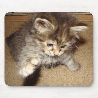 Kitty maniant la batte à la souris tapis de souris
