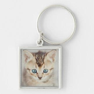 Kitty observé par bleu porte-clé carré argenté