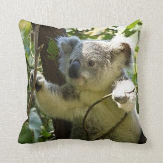 Koala adorable dans le coussin de jet d'arbre