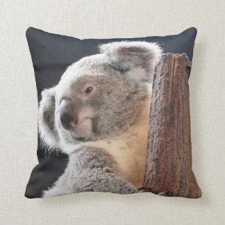 Koala australien oreillers
