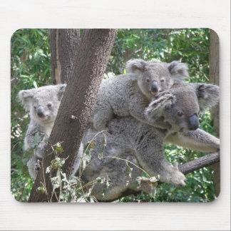 Koala de Mousepad et photo Australie de deux bébés Tapis De Souris