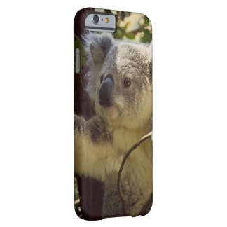 koala doux 2b coque iPhone 6 barely there