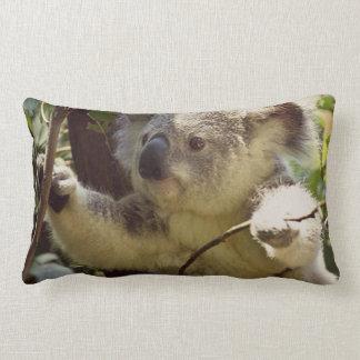 koala doux 2b coussins carrés