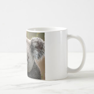 Koala Mug Blanc