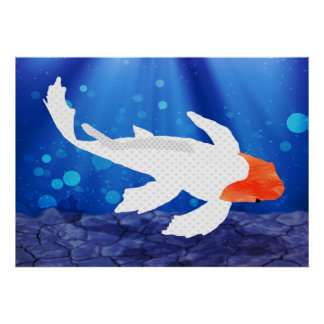 Kohaku couvert par orange Koi dans la lagune bleue Affiches