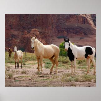 L Arizona réserve indienne de Navajo Chinle Posters
