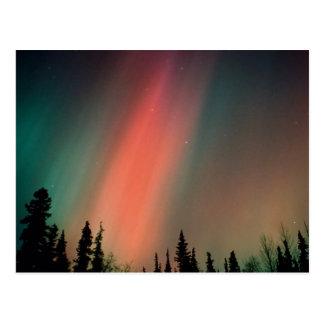 L aurore Borealis lumières du nord Alaska Carte Postale