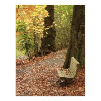La beauté de l'automne carte postale
