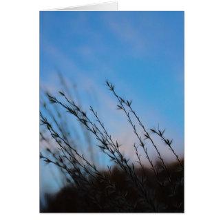 La beauté des cartes de note de simplicité