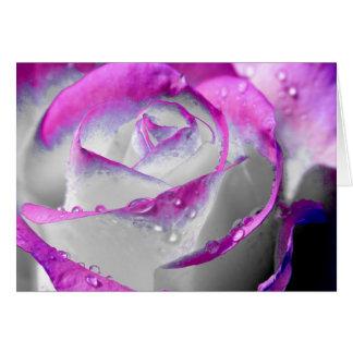 La beauté rose s'est levée carte de vœux