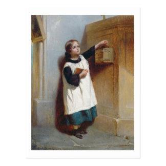 La boîte de collection (huile sur le panneau) carte postale
