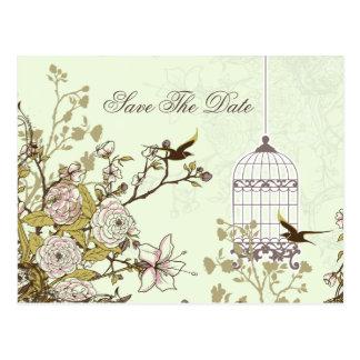 La cage à oiseaux verte chic, inséparables font carte postale